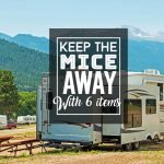 Your RV Is Yours: Keep The Mice Away With 6 Simple Items