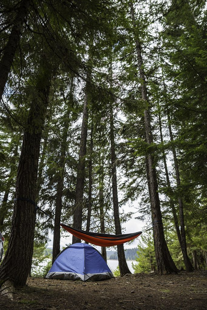 Camping-in-the-wilderness