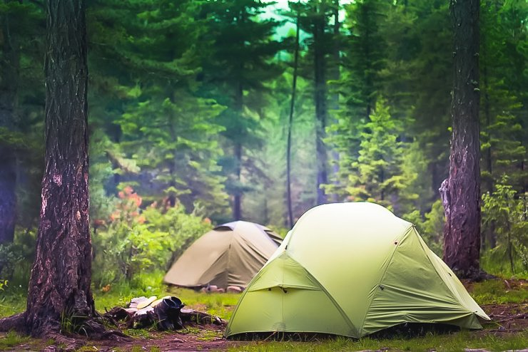 FOREST-CAMPING-TIPS-FOR-BEGINNERS