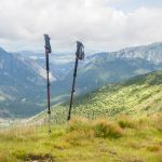 Top 5 Best Trekking Poles For Trekkers, Hikers And Back Packers