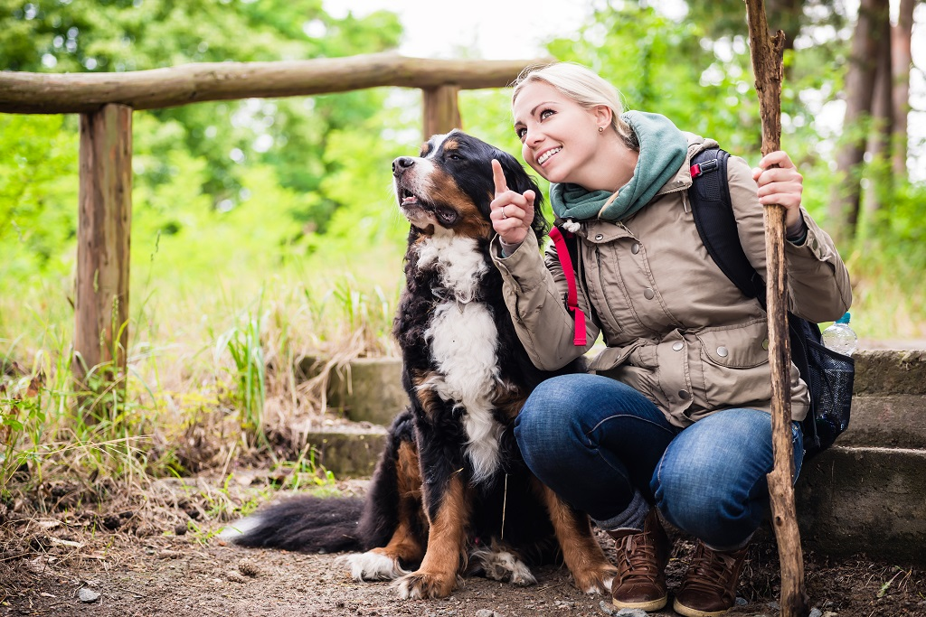 Hiking woman with rucksack and her bernese mountain dog on a tra