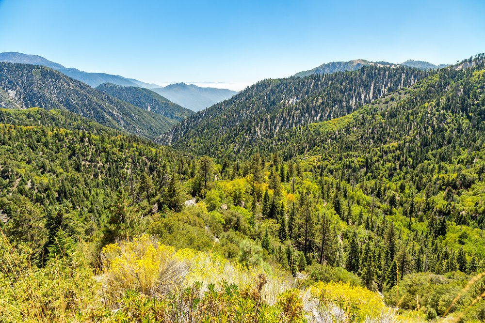 Big-Bear-Creek-Valley-in-the-San-Bernardino-National-Forest