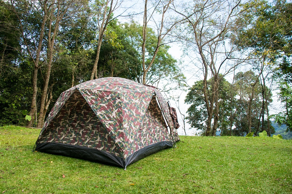 Camping Pop up Tent in in the forest