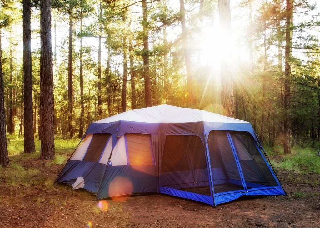 Camping Tent in Woods at Sunrise